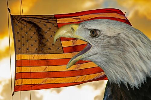 D-58-106 - American Bald Eagle & American Flag. Caseville, MI. Digitally enhanced.