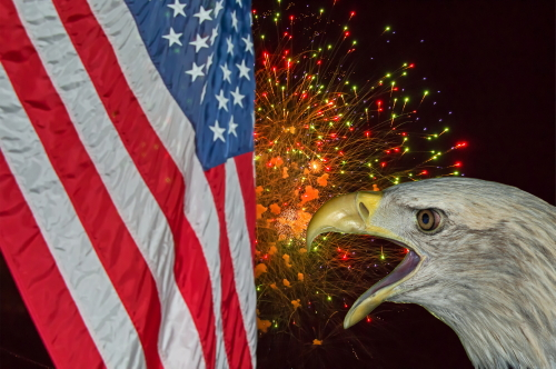 D-FP-54 - American Flag, Fireworks & American Bald Eagle. Caseville, MI. Digitally enhanced.