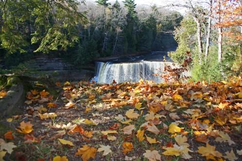 D-15-132 - Upper Falls of the Tahquamenon River. Tahquamenon State Park. Paradise, MI.