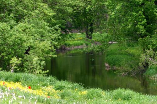 D-13-30 - Scene along the Pigeon River. Caseville, MI.