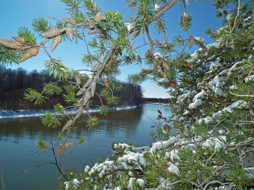 D-13-57 - Scene along the Pinnebog River. Port Crescent State Park Day Use Area. Port Austin, MI.