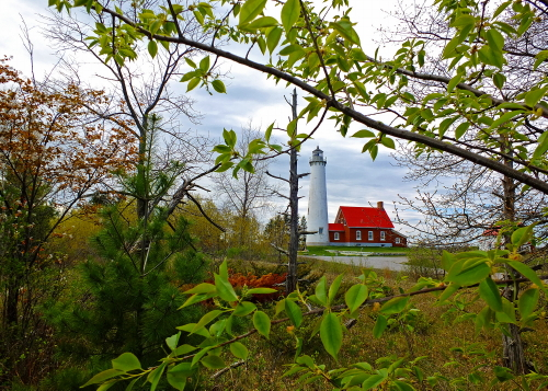 D-LH-543 - Tawas Point Lighthouse. Tawas State Park. Tawas City, MI.