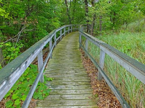 D-RP-165 - Boardwalk leading to Lake Huron. Sleeper State Park. Caseville, MI.