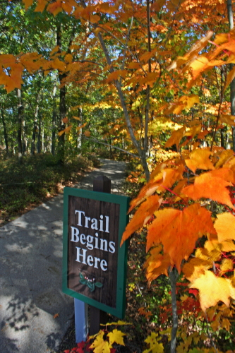 D-RP-69 - Autumn Pathway. Huron County Nature Center. Oak Beach, MI.