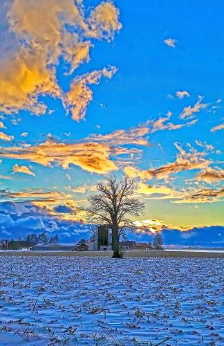 D-12-416 - Farm Scene at Sunset. Digitally enhanced. Caseville, MI.
