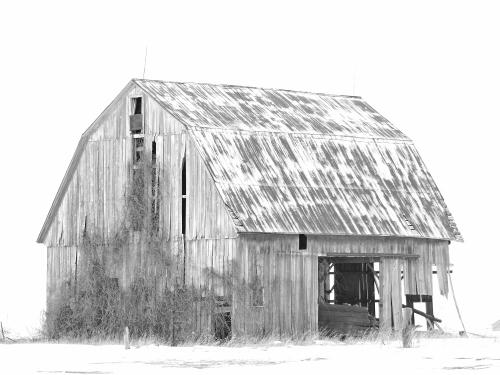D-9-176 - Wintry Farm Scene. Sebewaing, MI. Digitally enhanced. B&W.