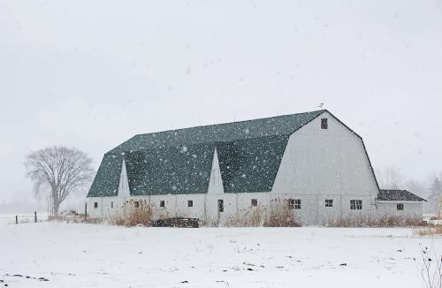 D-9-208 - Wintry Farm Scene. Caseville, MI.