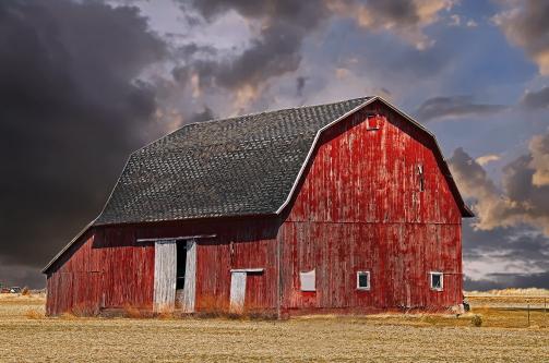 D-9-234 - Farm Scene. Unionville, MI.