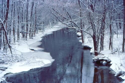 16-1-18 - Wintry scene along the Pigeon River. Caseville, MI.