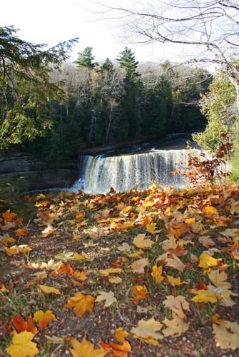 D-15-131 -Upper falls of the Tahquamenon River. Tahquamenon State Park. Paradise, MI.