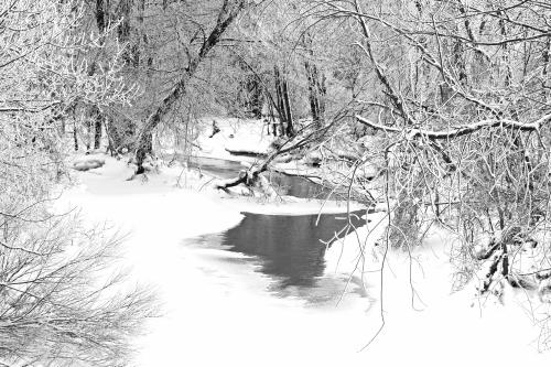 D-16-176 - Wintry Scene along the Pigeon River. Caseville, MI. B&W.